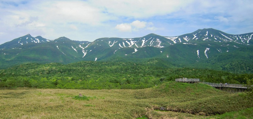 世界遺産をこの目で!知床五湖を高架木道で観光